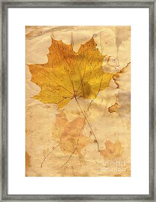 Autumn Leaf In Grunge Style Framed Print by Michal Boubin