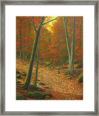 Autumn Leaf Litter Framed Print