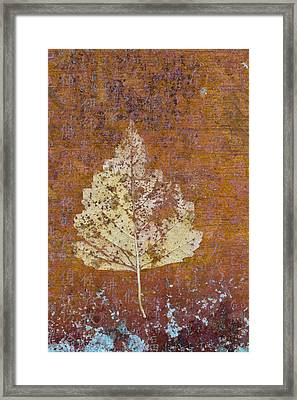 Autumn Leaf On Copper Framed Print by Carol Leigh