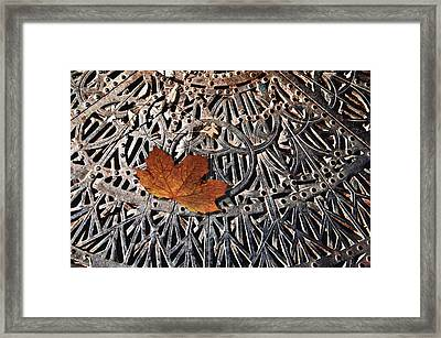 Autumn Leave On Iron Grate Framed Print by Larry Butterworth