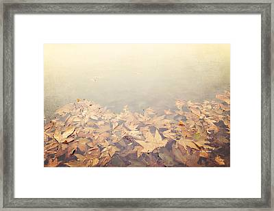 Autumn Leaves Floating In The Fog Framed Print by Angela A Stanton