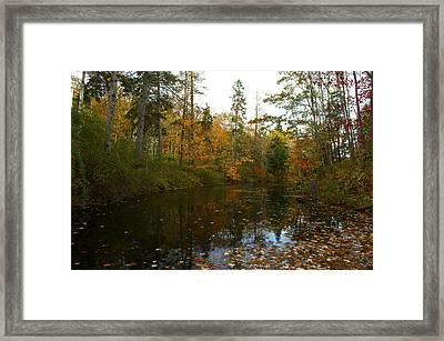 Autumn Leaves Framed Print by Julie Smith