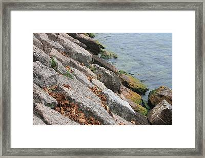 Framed Print featuring the photograph Autumn Leaves Lake Garda Italy by Jean Walker