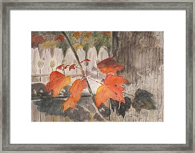 Autumn Leaves On Belmont St Framed Print