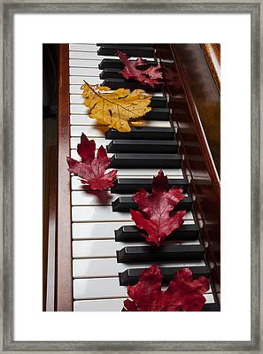 Autumn Leaves On Piano Framed Print by Garry Gay