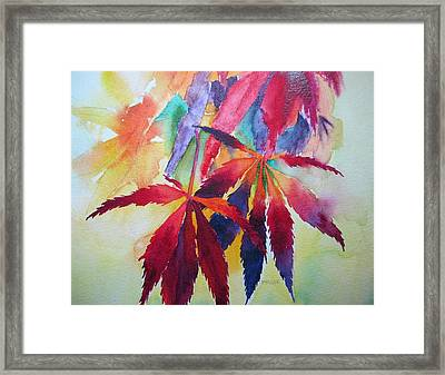 Autumn Leaves Framed Print by Pat Yager
