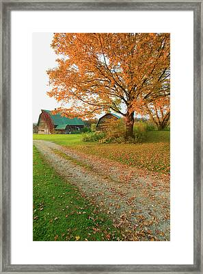 Autumn Leaves, Red Barn And Dirt Path Framed Print