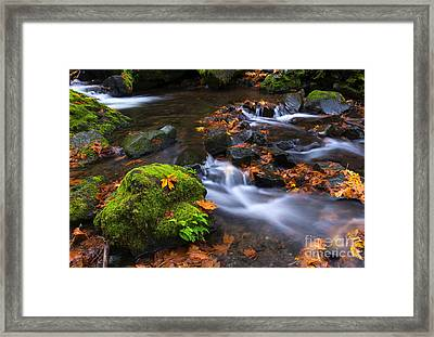 Autumn Leaves Scattered Framed Print by Mike Dawson