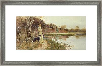 Autumn Leaves Framed Print by Thomas James Lloyd