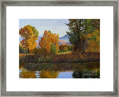 Autumn Light Framed Print by Beverly Theriault