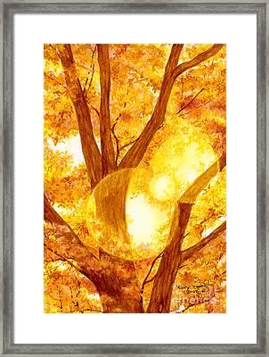 Autumn Light Framed Print by Hailey E Herrera