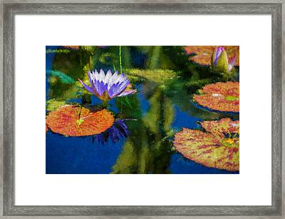 Autumn Lily Pad Impressions Framed Print by Georgia Mizuleva