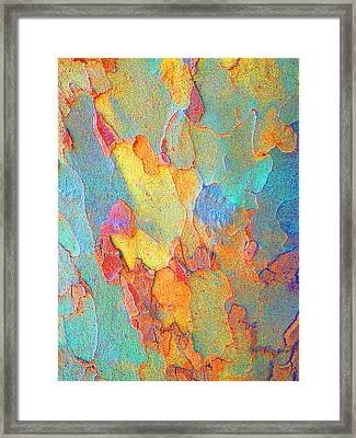 Autumn London Plane Tree Abstract 2 Framed Print