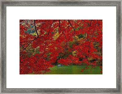 Autumn Love Framed Print by Midori Chan