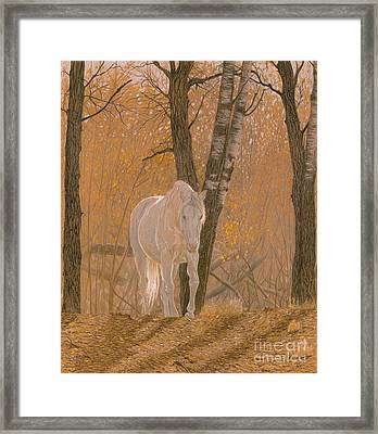 Autumn Magic Framed Print by Laura Klassen