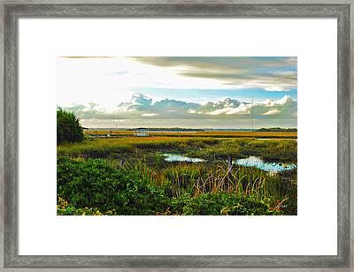Autumn Marsh - Sullivans Island Framed Print