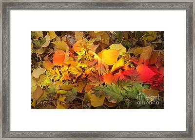 Autumn Masquerade Framed Print