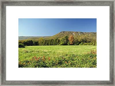 Autumn Massanutten Framed Print by Lara Ellis