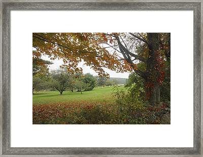 Autumn Meadow Framed Print