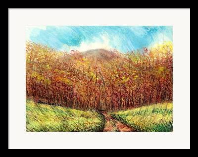 Maine Meadow Drawings Framed Prints