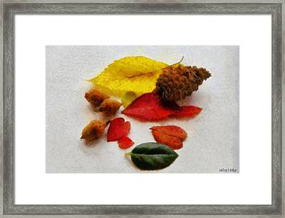 Autumn Medley Framed Print by Jeff Kolker