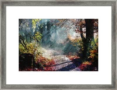 Autumn Memory Framed Print
