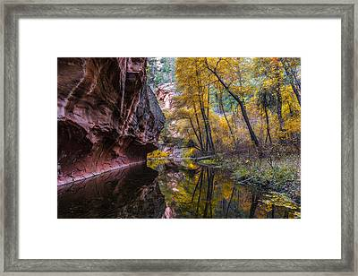 Autumn Mirror Framed Print by Guy Schmickle
