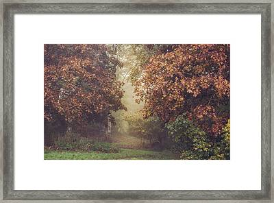 Autumn Mist In A Woodland Glade Framed Print by Chris Fletcher