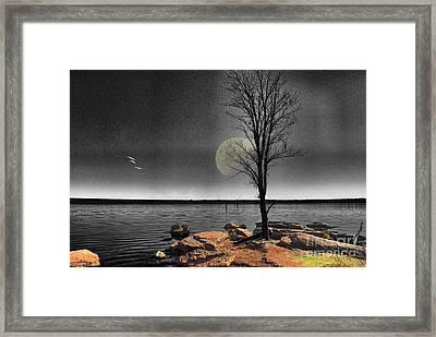 Autumn Moon Framed Print by Betty LaRue