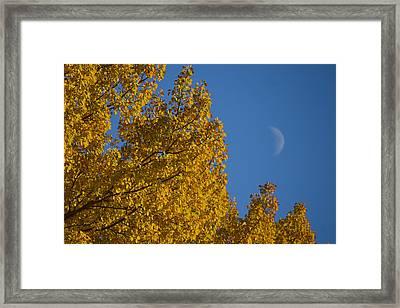 Autumn Moonrise Framed Print
