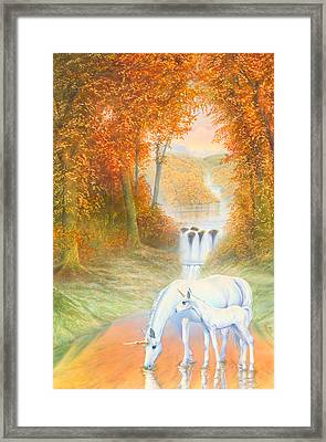 Autumn Morning Framed Print by Andrew Farley