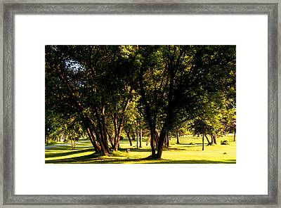 Autumn Morning Stroll Framed Print