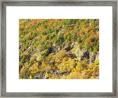 Framed Print featuring the photograph Autumn Mountain Side by Gene Cyr