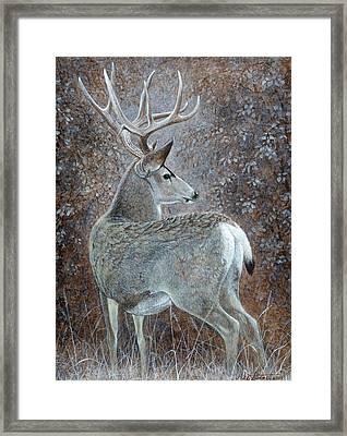 Autumn Muley Framed Print