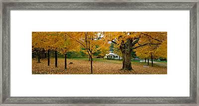 Autumn, Muskoka, Canada Framed Print