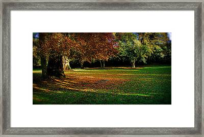 Autumn Framed Print by Nina Ficur Feenan