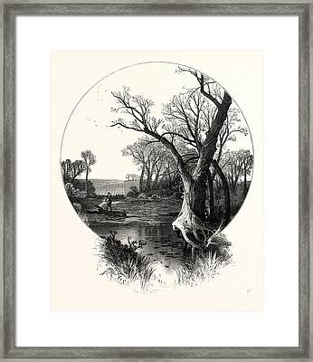 Autumn. Octobers Winds Have Swept The Leaves Away Framed Print