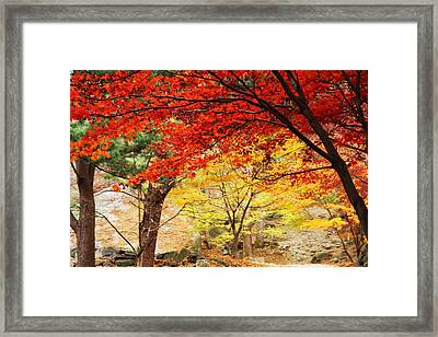 Autumn Of Chungnyeongsan Framed Print by Phoresto Kim