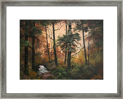 Autumn On Cannock Chase Framed Print by Jean Walker