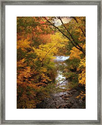 Autumn On Display Framed Print by Jessica Jenney