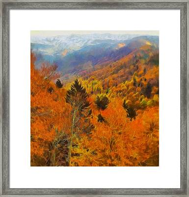 Autumn On Fire In The Mountains Framed Print by Dan Sproul