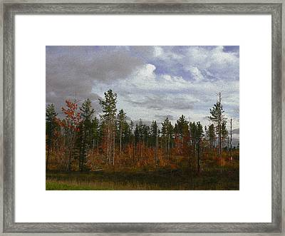Autumn On Forest Edge Framed Print by Lin Haring