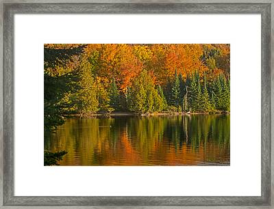 Autumn On Grand Sable Lake Framed Print