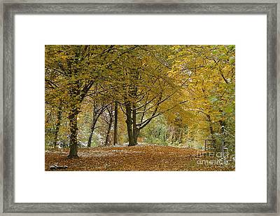 Framed Print featuring the photograph autumn on Moenchsberg in Salzburg by Rudi Prott