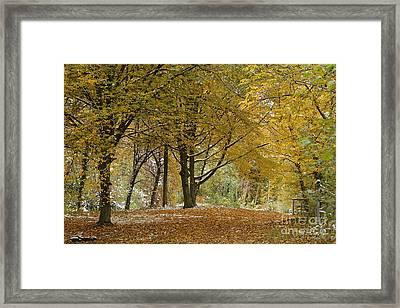 autumn on Moenchsberg in Salzburg Framed Print by Rudi Prott
