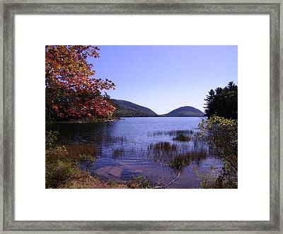 Autumn On Mt. Desert Island Framed Print