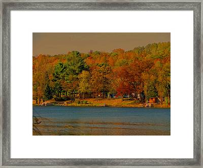 Autumn On Mt Noris Lake Framed Print by Victoria Sheldon