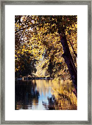 Autumn On The Applegate Framed Print by Melanie Lankford Photography
