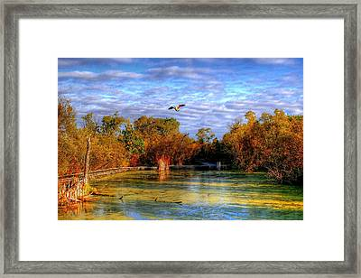 Autumn On The Boardwalk Framed Print by Larry Trupp