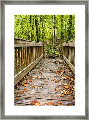 Autumn On The Bridge Framed Print